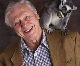 Life of mammals – Sir David Attenborough