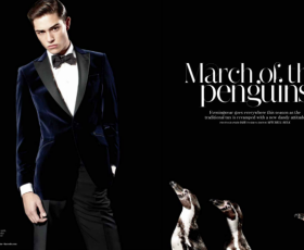 Francisco Lachowski March of the Penguins