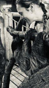 sloth..